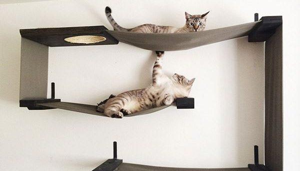 Kumaşlı-kedi-oyun-alanları